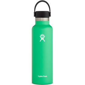 Hydro Flask Standard Mouth Flex Bottle 621ml spearmint